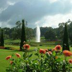 Burmese Gardens