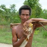 Burmese Country Father