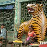 Guardian Tiger Spirit 2